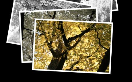 Screen shot 2009-11-15 at 16.07.36