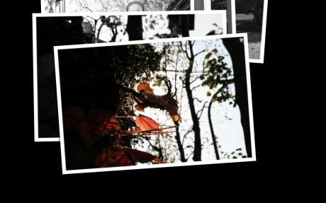 Screen shot 2009-11-15 at 16.08.38